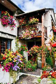Flower Garden App by Our Uk Trip England This Dear Dear Land Flower Flowers