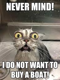 Cat Meme Boat - knew it fun memes pinterest humor cat and animal