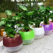 Plants And Planters by Aliexpress Com Buy Mkono 3 5pcs Self Watering Pot Automatic