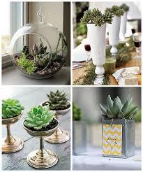 decor plants home faux succulent arrangement plant mini green plants home decor