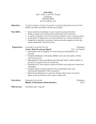 Insurance Resume Examples by Resume Insurance Agent Resume Sample