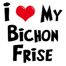 bichon frise cartoon bichon frise gifts gifts for dog lovers my dog rulez