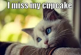 Cupcake Memes - my cupcake quickmeme