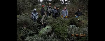 Christmas Tree Pick Up Troop 591 Christmas Tree Pick Up Fundraiser We Recycle Your Old