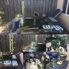 hydroponics u0026 aquaponics koi pond 5 steps
