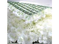 flower wall other wedding services gumtree