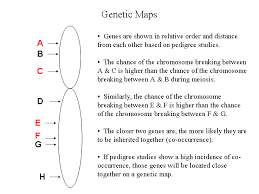genetic map genomes and maps