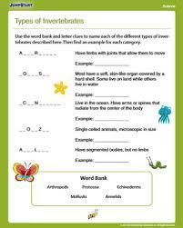 types of invertebrates u2013 free science worksheet for 4th grade