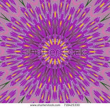 Shades Of Purple Purple Shade Stock Images Royalty Free Images U0026 Vectors