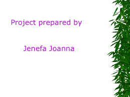 Plants Of Season 4 Joanna by Plant Transpiration