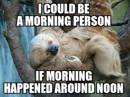 Cute Sloth Meme - instlorisloth instagram photos and videos