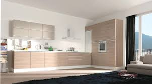 two tone kitchen cabinets decorated with contemporary style using