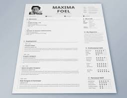 Indesign Resume Resume Examples 10 Best Ever Perfect Examples Of Detailed Edit