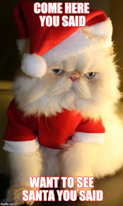 Cute Christmas Meme - image tagged in grumpy cat christmas santa cats cute memes imgflip