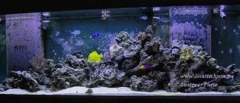 Aquascaping Rocks Marine Aquarium Reef Tank Customer Photos Live Rock Aquascapes