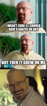 Goatee Meme - beard imgflip
