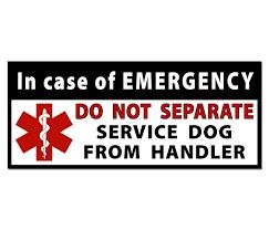 jeep bumper stickers amazon com do not separate service dog handler medical alert