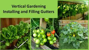 vertical gardening how to grow better vegetables installing