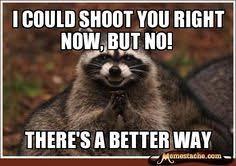 Funny Raccoon Meme - funny raccoon meme funny pinterest funny raccoons raccoons