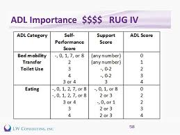 Rug Iv Classification System Adl Coding Impacts The Mds Focused Survey Terry Raser Rn Rac Ct