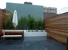 small court yard garden clapham london cedar screen slate paving