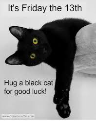 Friday The 13th Memes - it s friday the 13th hug a black cat for good luck