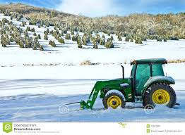 christmas tree farm and tractor editorial photo image 12847866