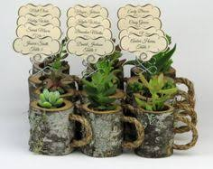 Hanging Succulent Planter by Birthday Gift For Mom Hanging Planter Indoor Rustic Hanging