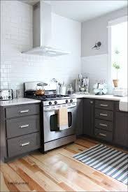 Dark Cabinets With Light Floors Kitchen Designmagnificent Best Color For Kitchen Cabinets Grey