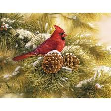 18ct december cardinal boxed cards target
