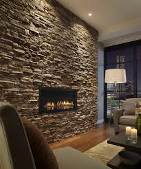 dc metro stacked stone fireplace bookcase living room traditional