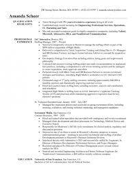 Staffing Recruiter Resume Resume Hamberg Pay For Technology Dissertation Proposal Custom