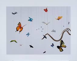 life cycle of butterflies u2013 words u0026 pictures
