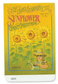 sunflower seed packets sunflower empty vintage look seed packets 10 package