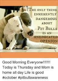 Life Is Good Meme - the only thing inherently danger ous about pit bulls is an