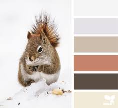26 best creature color images on pinterest color boards