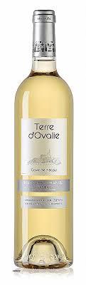 chambre d amour vin blanc vin blanc chambre d amour awesome ch teau nestuby 2015 ch teau