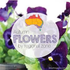Zone Gardening - seasonal growing guide australia about the garden magazine