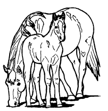 horse pony coloring u0026 coloring book