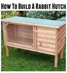 Cool Pets Rabbit Hutch 11 Best Rabbit Hutch Images On Pinterest Bunny Cages Rabbit