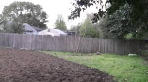tilling the useless lawn youtube