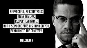 Malcolm X Memes - black news