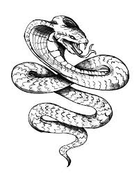 king cobra king cobra tattoo coloring pages animals