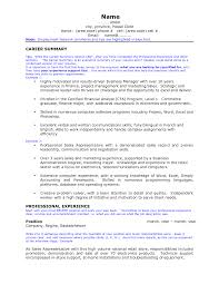 Example Of A Summary In A Resume by Professional Summaries For Resumes Resume For Your Job Application