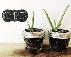 Small Desk Plants by Desk Top Decor Etsy