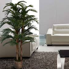 Palm Tree Runner Rug Laura Ashley Home Tall High End Realistic Silk Floor Palm Tree In