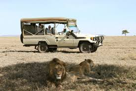 african safari car climbing kilimanjaro travel deals africa tours and tanzania