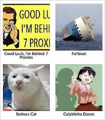 Know Your Memes - know your meme lists hilarious internet memes popsugar tech