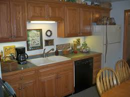 Kitchen Appliance Storage Ideas Kitchen Kitchen Color Ideas With Oak Cabinets Food Storage