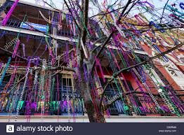 mardi gras trees hang on a tree after mardi gras in new orleans la stock
